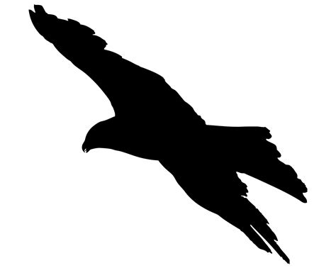 Bird Flying Silhouette Free Stock Photo   Public Domain ...
