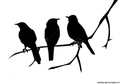 Bird On A Branch Silhouette | Wallpapers Gallery