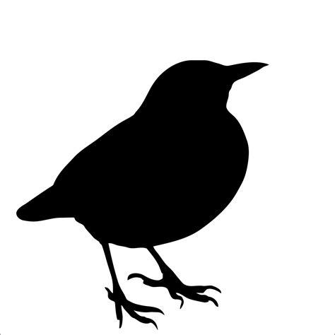 Bird Silhouette, Blackbird Free Stock Photo   Public ...