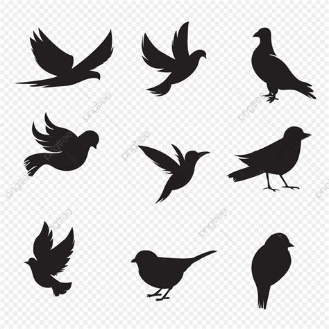 Bird Silhouette Collection, Silhouette, Bunny, Shadow PNG ...