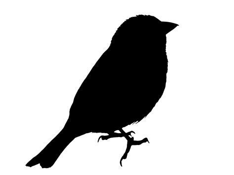 Bird Silhouette Sparrow Clipart Free Stock Photo   Public ...