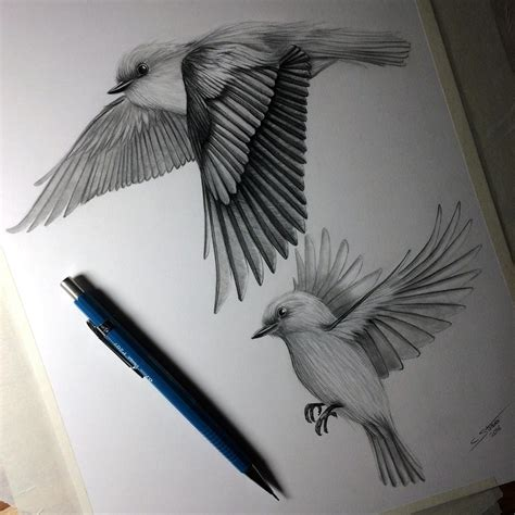 Birds Flying   Drawing Study by LethalChris on DeviantArt