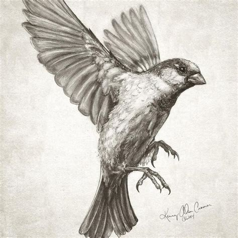 Birds In Flight Drawing at GetDrawings | Free download