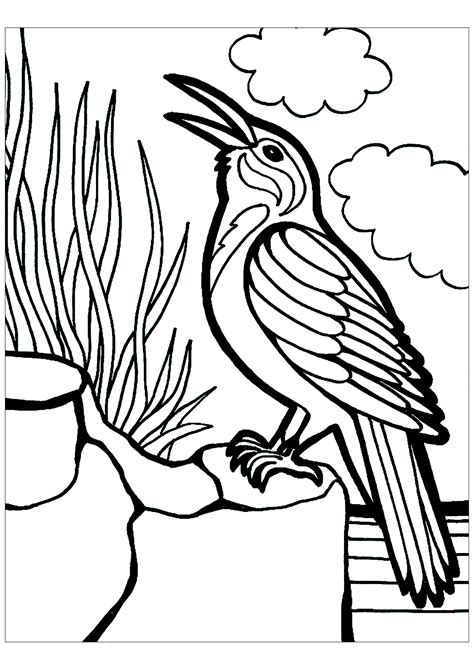 Birds to print for free   Birds Kids Coloring Pages