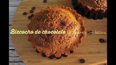 Bizcocho De Chocolate Sin Gluten Sinlactosa   YouTube