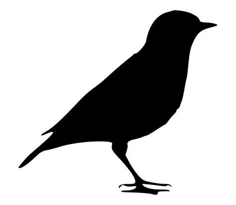Black Bird Silhouette Png | Transparent PNG Download ...