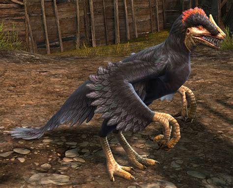 Black Raptor   Guild Wars 2 Wiki  GW2W