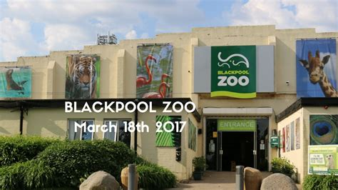 Blackpool Zoo March 18th 2017   YouTube