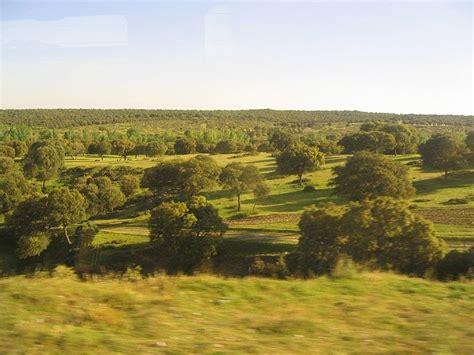 blog de carmina lara: climas y vegetacion de españa