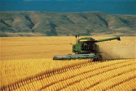 Blog de Sociales: Agricultura extensiva