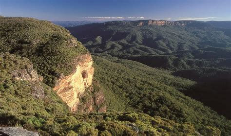 Blue Mountains National Park   NSW National Parks