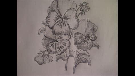 Blume zeichnen. Stiefmütterchen  Veilchen  zeichnen.   YouTube