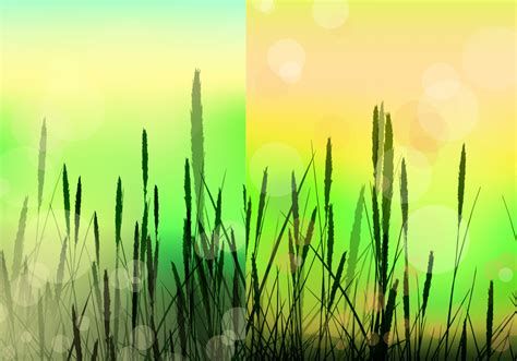 Bokeh Reed Background Vector Pack   Download Free Vectors ...