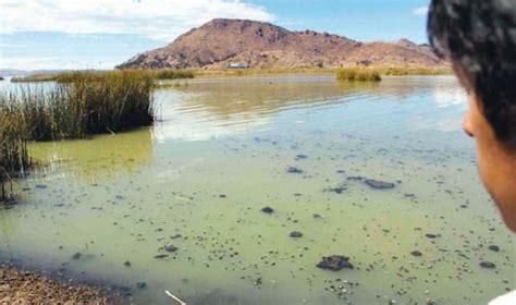 Bolivia inicia plan para descontaminar aguas del lago ...