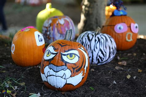 BOO! at the Zoo Begins This Weekend   City of Knoxville