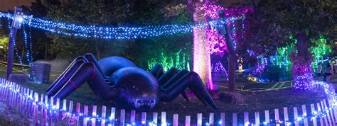 Boo at the Zoo Nights presented by SSM Health Cardinal ...