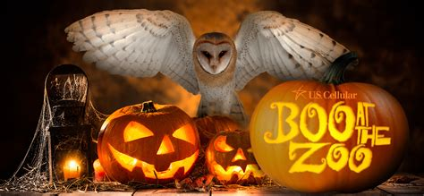 Boo! at the Zoo Tickets Now on Sale   City of Knoxville