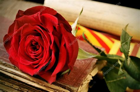 Book, red rose and the catalan flag for Sant Jordi, Saint ...