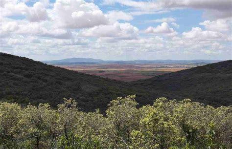 Bosque mediterráneo, clima, flora y fauna. Dónde encontrarlo