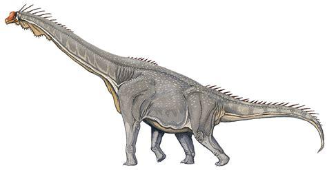 Brachiosaurus altithorax   Wikipedia, la enciclopedia libre