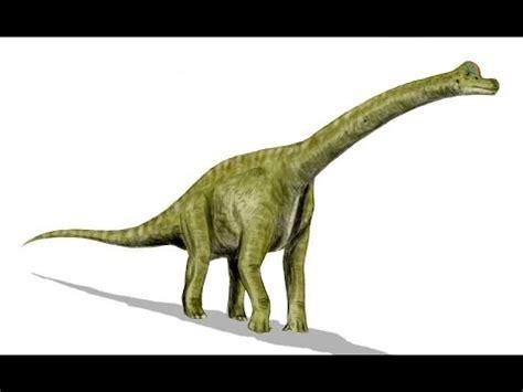 Brachiosaurus | Enciclopedia sobre Dinosaurios   YouTube