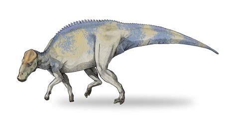 Brachylophosaurus | Dinopedia | FANDOM powered by Wikia