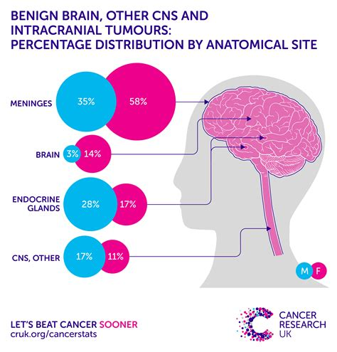 Brain, other CNS and intracranial tumours incidence ...