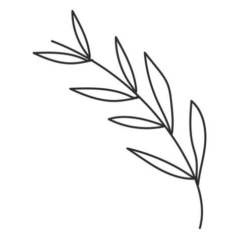 Branch leaf sketch   Transparent PNG & SVG vector