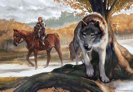 Brandon Stark, hijo de Eddard | Hielo y Fuego Wiki | Fandom