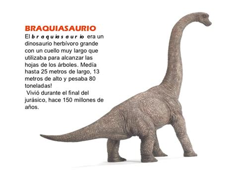 Braquiosaurio   La Webquest de los Dinosaurios