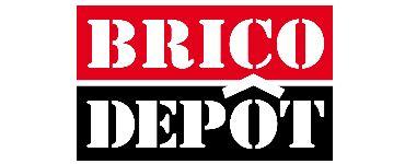 Brico Depot BLACK FRIDAY 2019 | Gazetka promocyjna, oferta