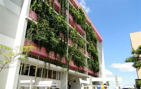 Brise Vegetal na fachada de prédios reduz consumo de ...