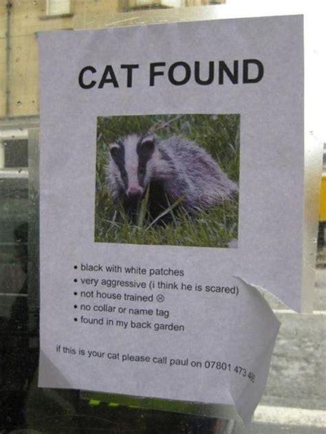 British Humor  37 pics