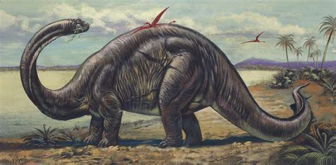 Brontosaurus is a Genus of Dinosaur, Palentology Study ...