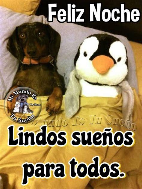 Buenas Noches | Perros lindos, Cachorros adorables, Humor ...