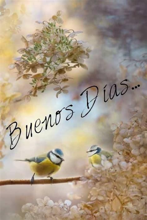 Buenos Dias archivos   Imagenes Romanticas   Frases ...