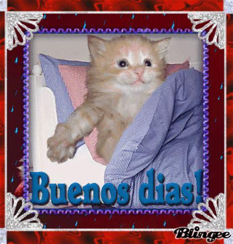BUENOS DIAS GATITO Picture #117664949   Blingee.com