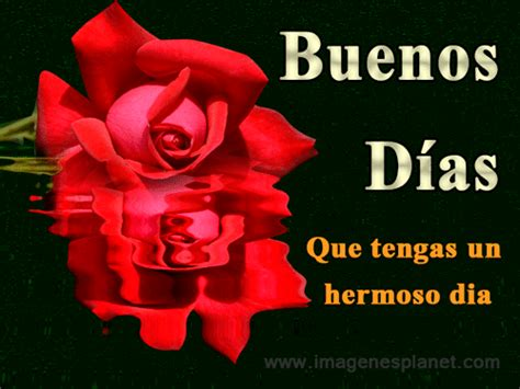 Buenos dias hermosa gif 9 » GIF Images Download