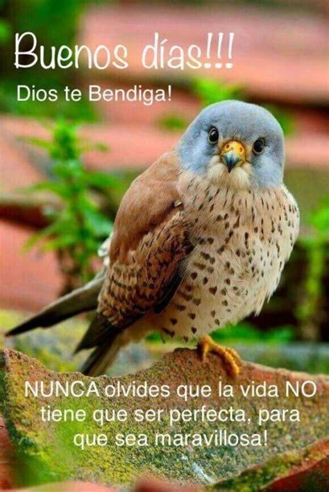 Buenos Días imágenes   BonitasImagenes.net