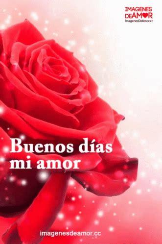 Buenos Días Mi Amor GIF   BuenosDiasMiAmor Rose Love ...