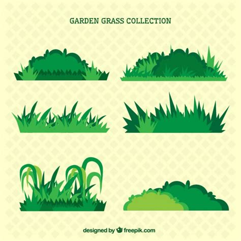 Bushes Vectors, Photos and PSD files | Free Download