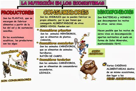 CAJÓN DE PRIMARIA: TEMAS 4 5 6  NATURALES 5º: LOS ECOSISTEMAS