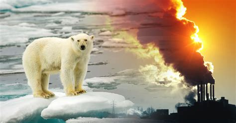 Calentamiento global: causas, consecuencias y ...