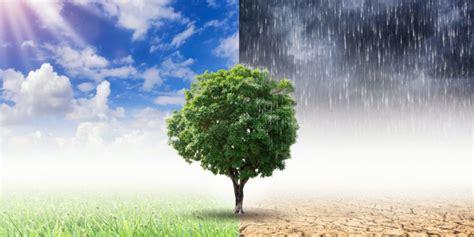 Cambio Climático   Concepto, causas, efectos y consecuencias