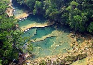 Cambio climático: los impactos ecológicos en Chiapas ...