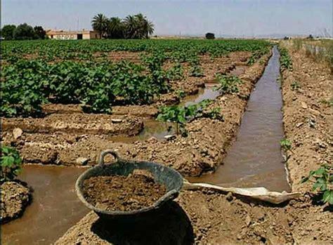 Cambios en la técnica de riego. La nueva agricultura ...