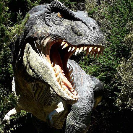 caminando entre dinosaurios   Picture of Parque Nahuelito ...