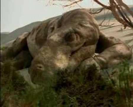 Caminando Entre Monstruos:Vida Antes de los Dinosaurios ...