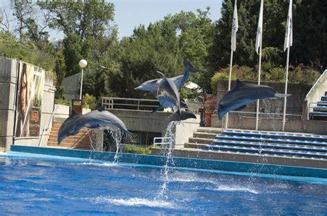Campamentos Urbanos en el Zoo de Madrid ¿Te Apuntas?Blog ...