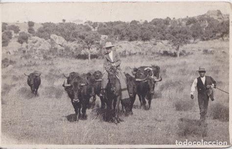 campos de madrid  madrid    ganaderia de toros   Comprar ...